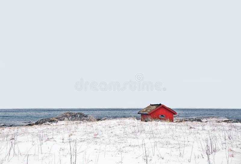 La choza sola en lofoten en norwey fotografía de archivo