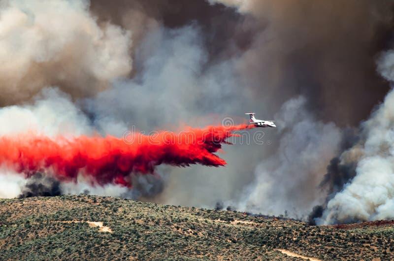 La chute blanche d'avions ignifuge en tant qu'elle lutte le feu de forêt faisant rage photo libre de droits