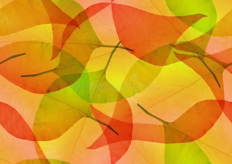 La chute rouge et jaune laisse un arrière-plan transparent photographie stock libre de droits