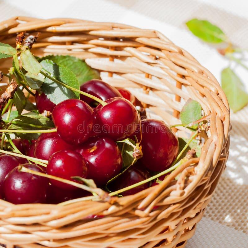 La ciliegia è regina della stagione estiva della bacca immagini stock