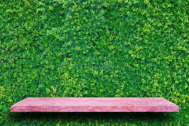 La cima vuota della tavola di pietra di marmo rosa sulle foglie verdi mura il backg immagini stock libere da diritti