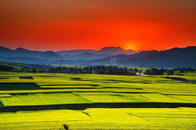 La Cina del sud in primavera fotografie stock