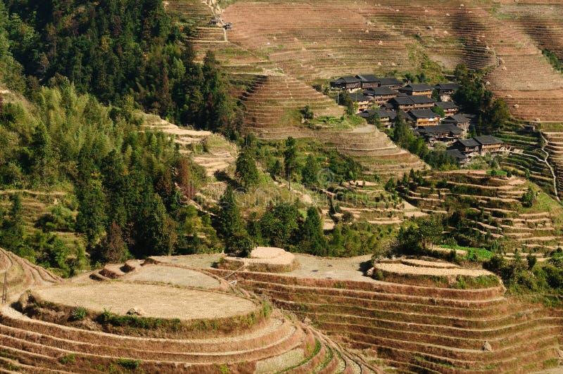 La Cina - terrazzi del riso immagini stock libere da diritti