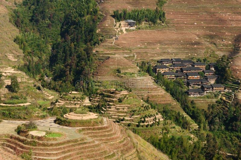 La Cina - terrazzi del riso fotografia stock libera da diritti