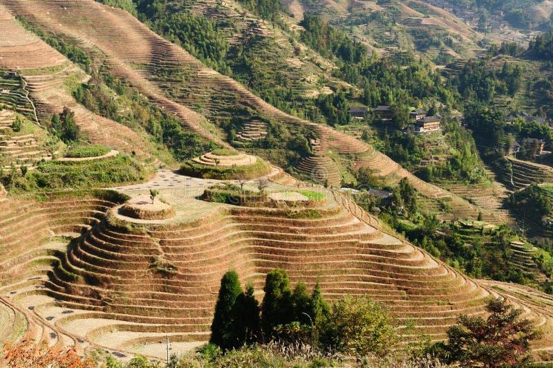 La Cina - terrazzi del riso immagine stock