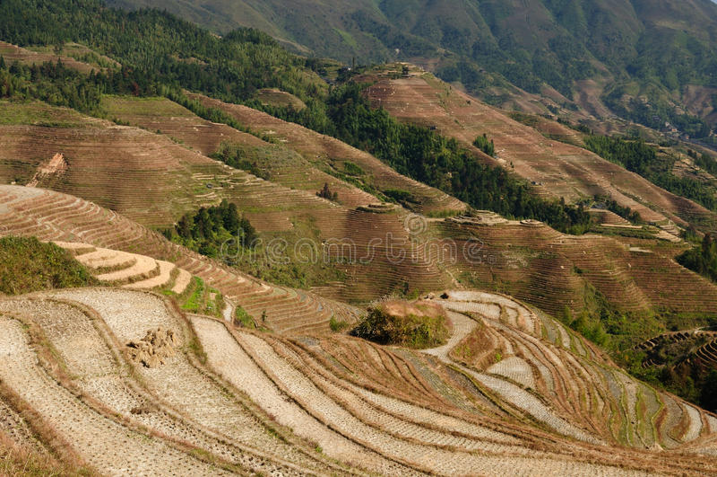 La Cina - terrazzi del riso fotografie stock