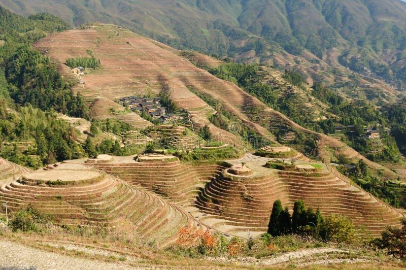 La Cina - terrazzi del riso immagini stock