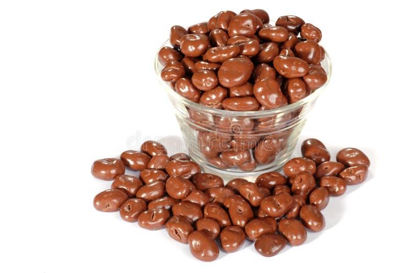 La ciotola di cioccolato ha coperto l'uva passa immagini stock libere da diritti