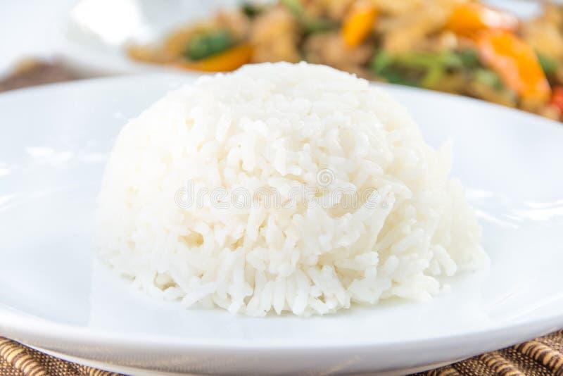 La ciotola di riso per mangia fotografia stock libera da diritti