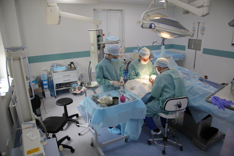 La cirug?a para coser la mu?eca el equipo de neurocirujanos y los traumatologists restaura la mano fotos de archivo
