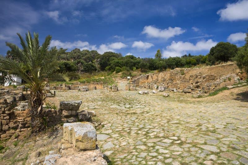 La citadelle de Chellah - les ruines romaines photographie stock libre de droits