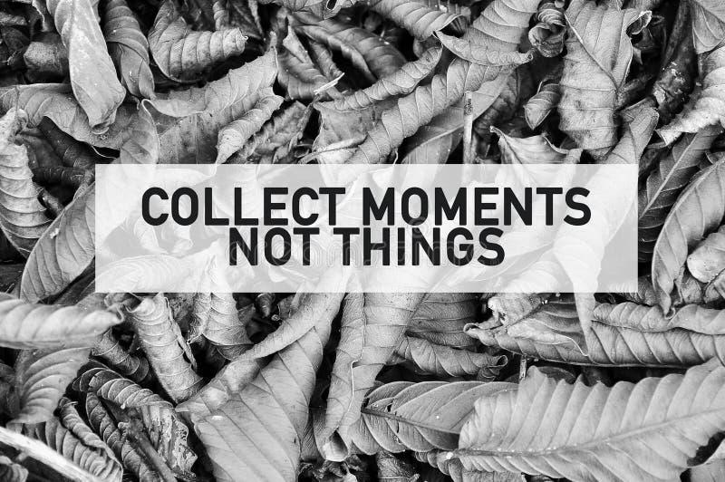 La citazione ispiratrice della motivazione di raccoglie le cose di momenti non sulla struttura completa ha asciugato le foglie in immagini stock