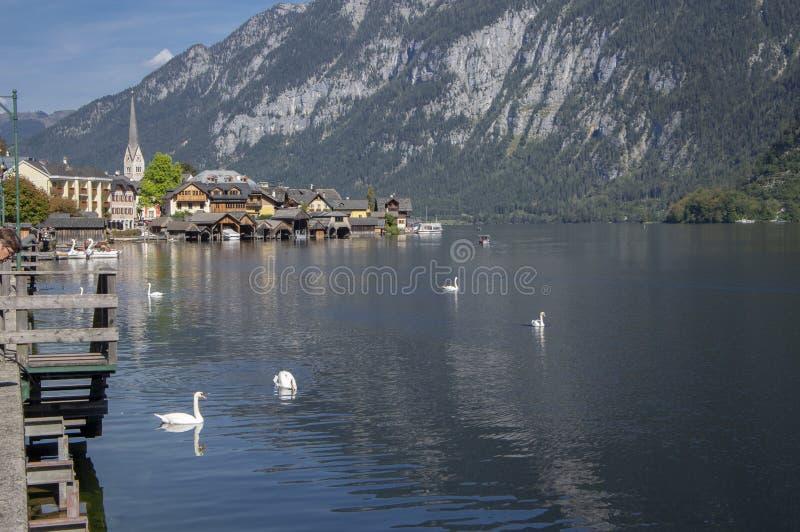 La cittadina pittoresca Hallstadt ? stato austriaco dell'Austria settentrionale, bello posto circondato dalle montagne e dal lago fotografie stock