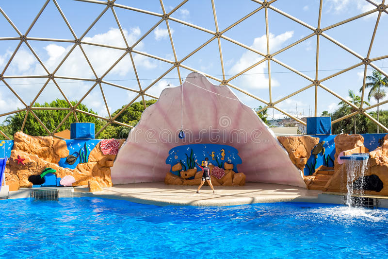 La clôture d'otaries à Miami Seaquarium image stock