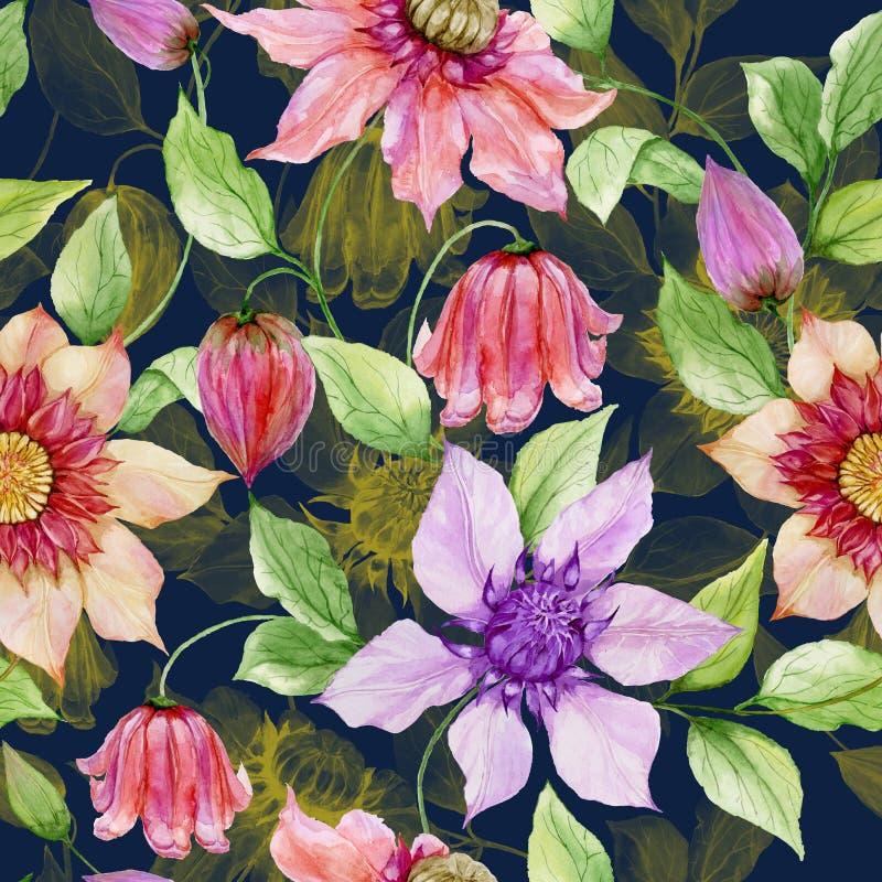 La clemátide hermosa florece en las ramitas que suben contra fondo azul marino Modelo floral inconsútil Pintura de la acuarela ilustración del vector