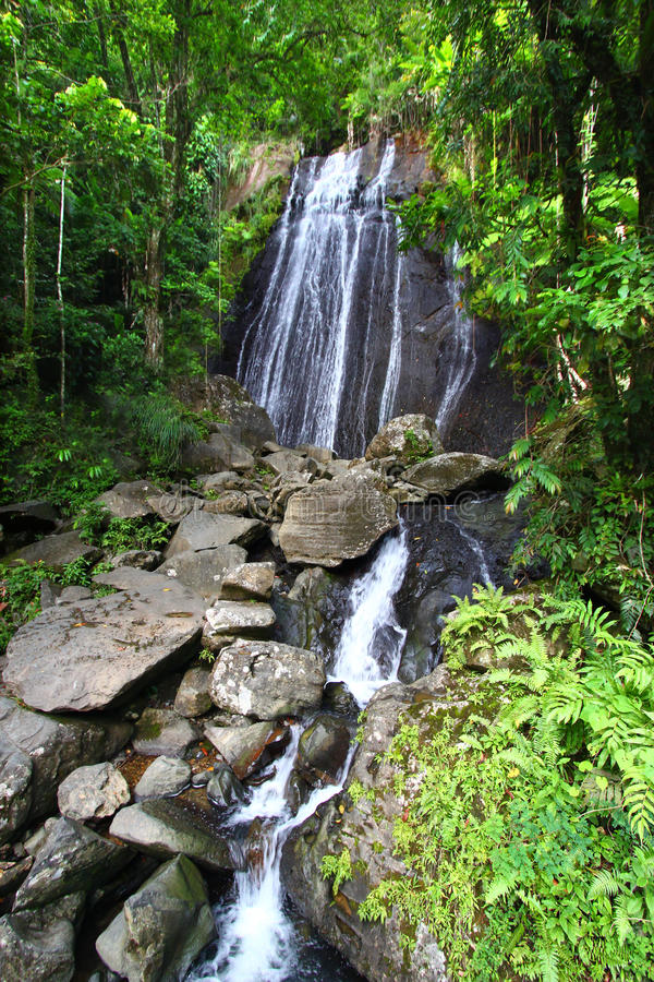 La Coca Falls Puerto Rico imágenes de archivo libres de regalías