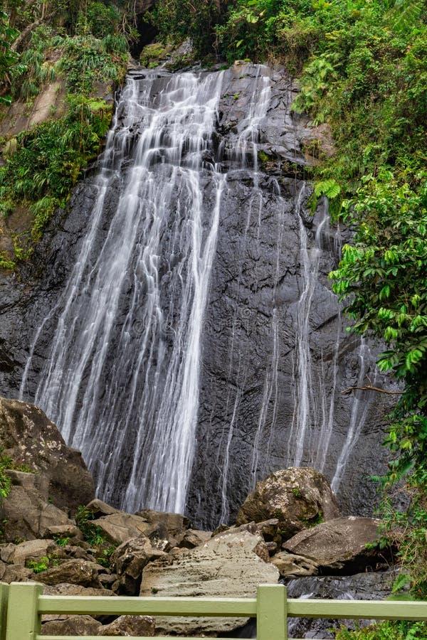 La Coca Waterfall, EL Yunque fotos de archivo