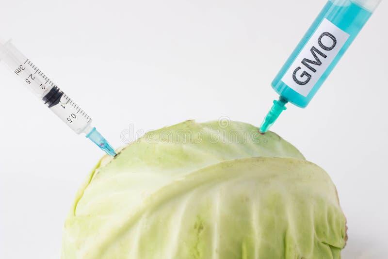 La col en un fondo blanco en el cual gmo y nitrata se inyecta de la jeringuilla, primer, organismo genético modificado foto de archivo libre de regalías