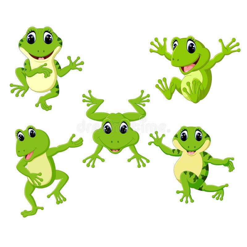 La colección de la rana verde hermosa en la diversa presentación stock de ilustración