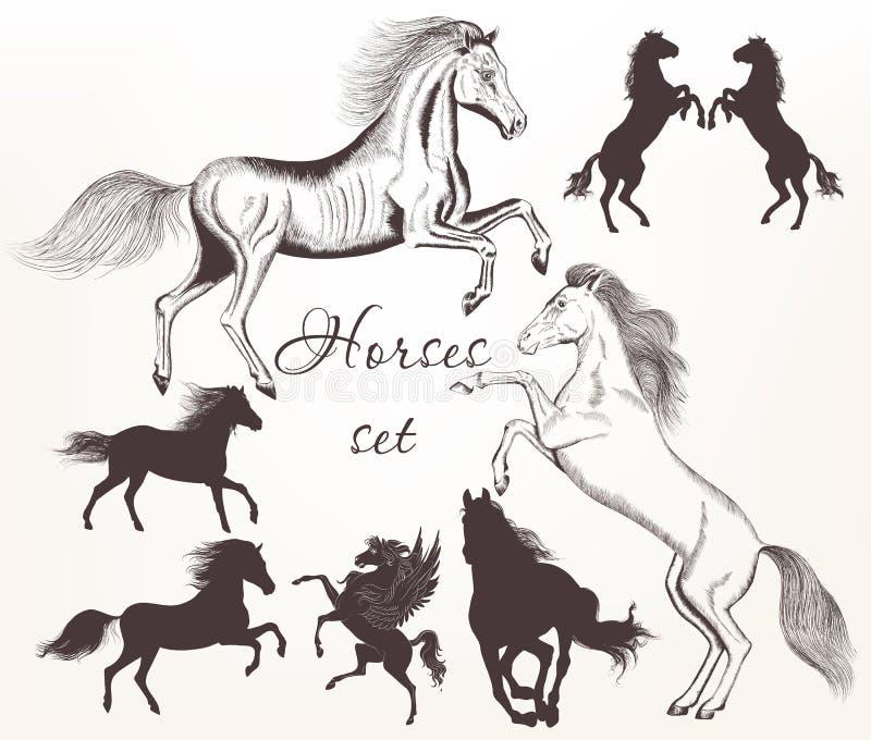 La colección de vector detalló caballos con las siluetas para el desig stock de ilustración
