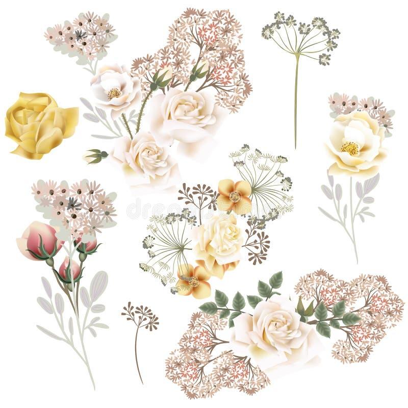 La colección de vector subió las flores para casarse diseño stock de ilustración