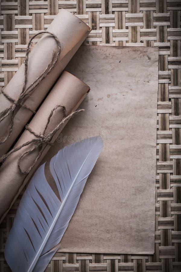 La colección de volutas de papel atadas de la hoja en blanco del vintage plume fotografía de archivo libre de regalías