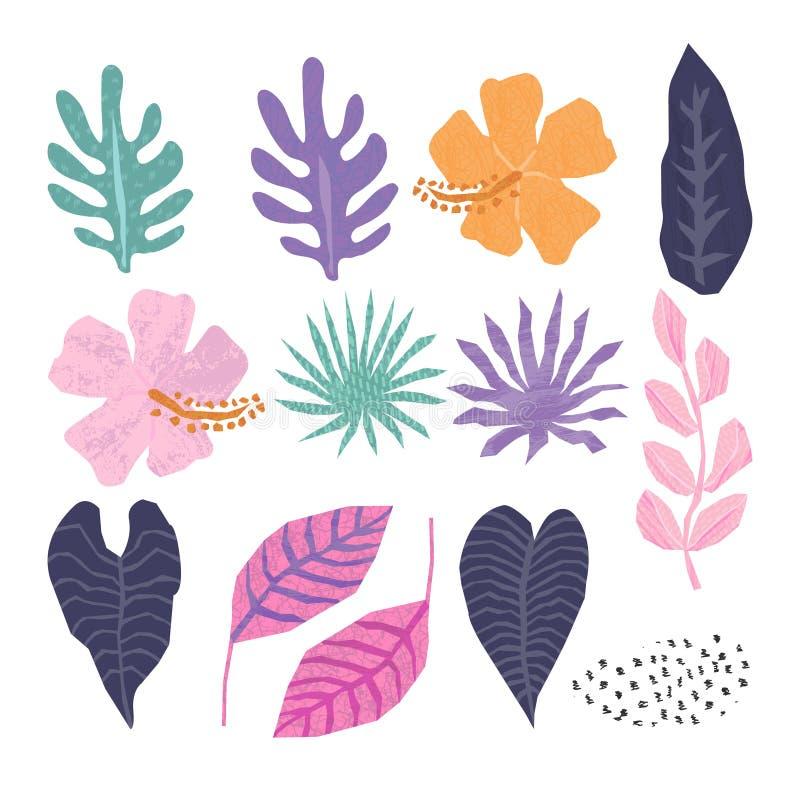 La colección del vector de selva tropical se va en geométrico de moda stock de ilustración