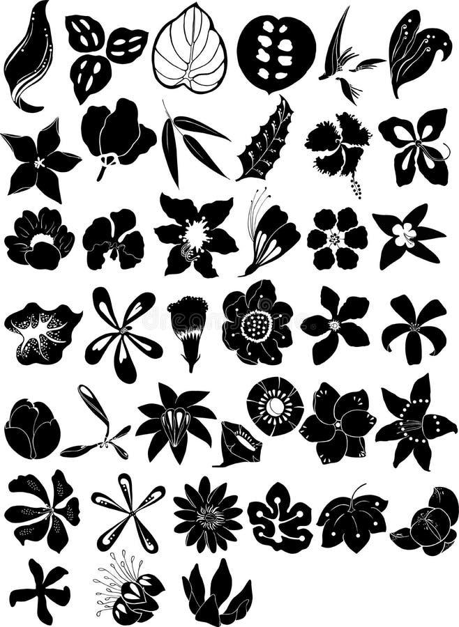 La colección florece vector ilustración del vector