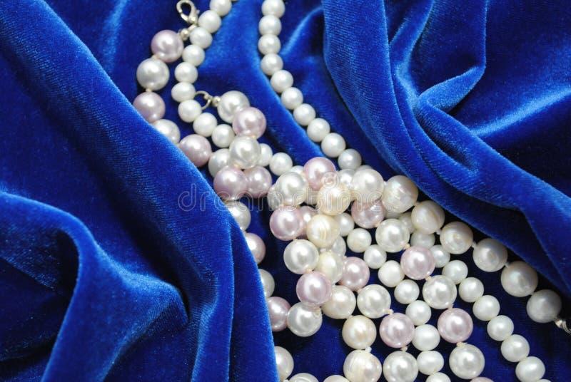 La collana della perla. fotografia stock libera da diritti