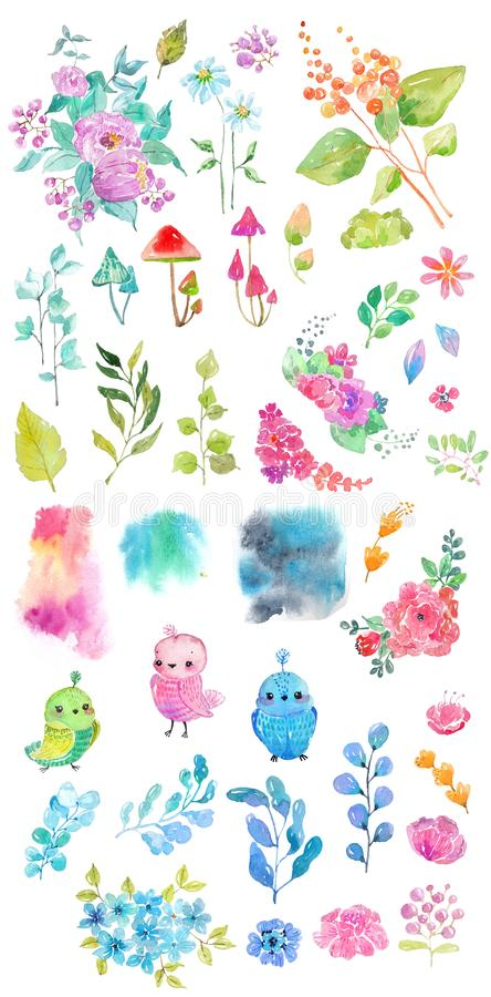 La collection d'aquarelle de couleur fleurit, des oiseaux, champignons illustration de vecteur