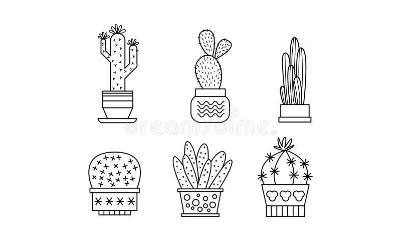 La collection de cactus et de succulents, les plantes d'intérieur linéaires dans des pots dirigent l'illustration sur un fond bla illustration de vecteur