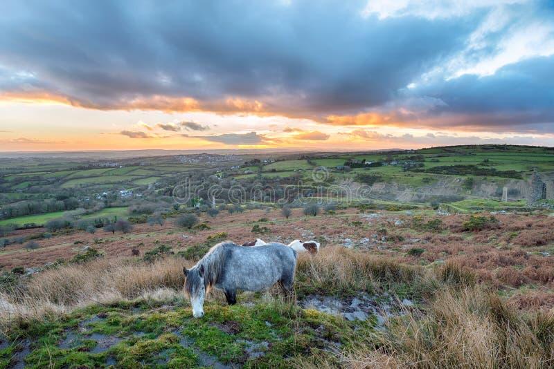La colline de Caradon sur Bodmin amarrent photo libre de droits