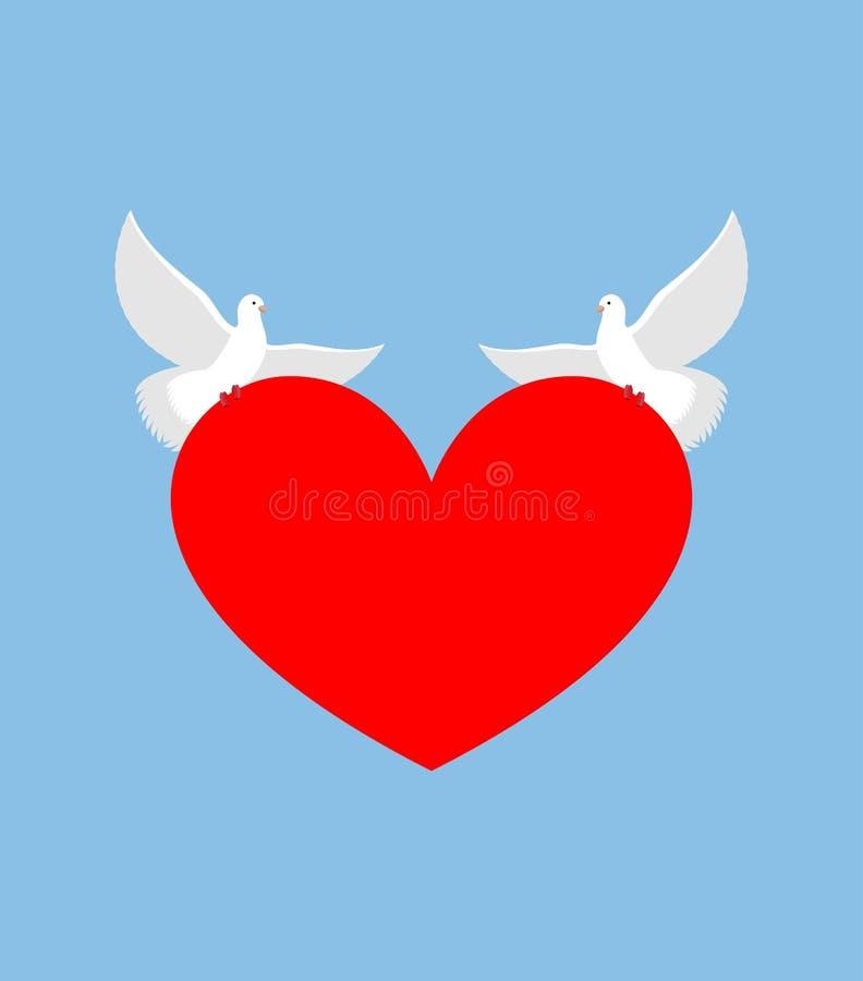 La colombe blanche tient le coeur L'oiseau de deux blancs est symbole de la pureté Rouge illustration libre de droits
