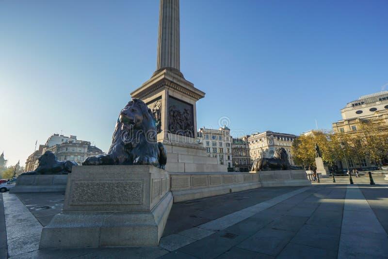 La colonne du Nelson et la statue de lion chez Trafalgar Square pour l'attraction touristique à Londres photo libre de droits
