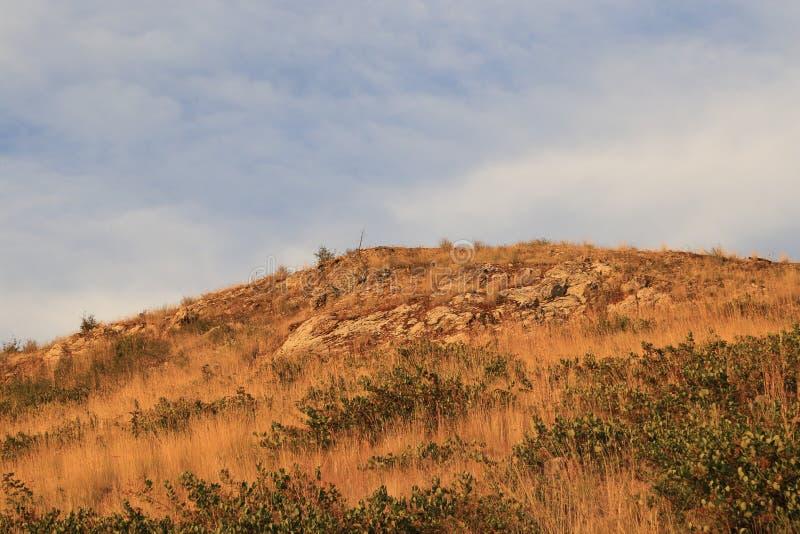 La Columbia Britannica di viaggio nella stagione di caduta per vedere la bella caduta-stagione abbellisce! fotografie stock libere da diritti