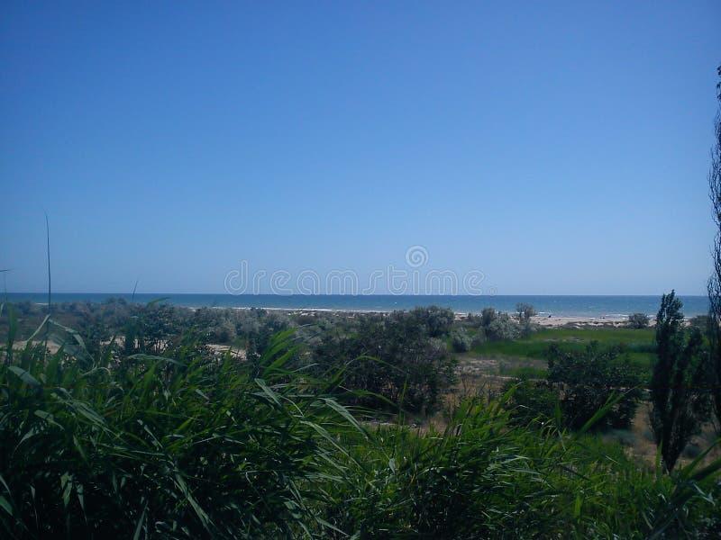 La combinazione di mare profondo calmo, di cielo blu profondo e di vita sulla riva calma fotografie stock libere da diritti
