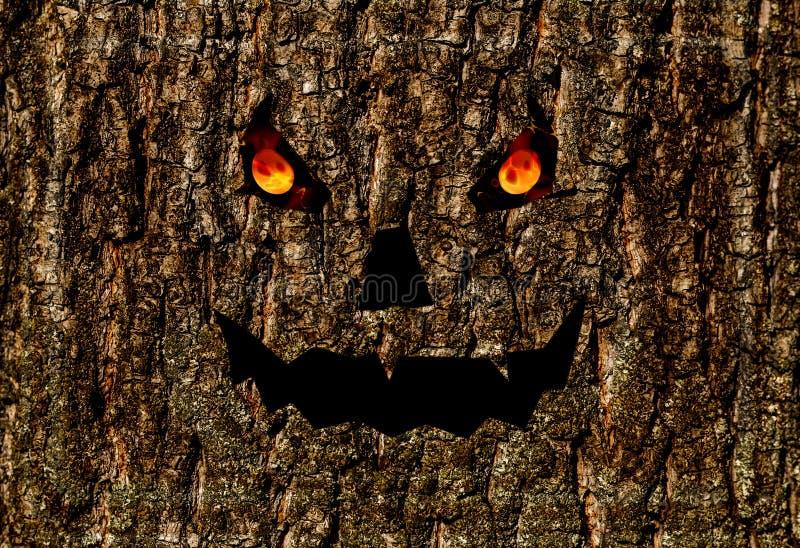 La combustione spaventosa del fronte osserva, presa della lanterna del fondo di Halloween sulla corteccia immagine stock