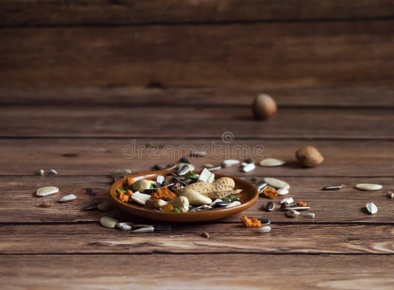 La comida del loro se dispersa en la tabla de madera fotos de archivo libres de regalías