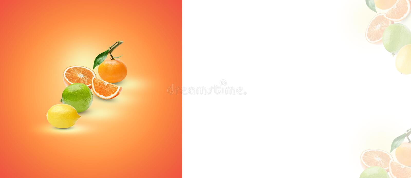 La composición de diversos agrios en un fondo anaranjado Proceso del arte de sombras y de puntos culminantes Lugar para el texto fotos de archivo