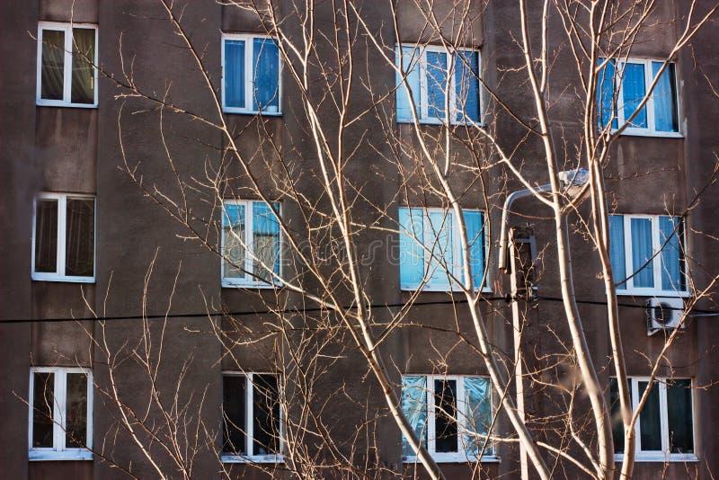 La composición de Windows y de las ramas imagenes de archivo