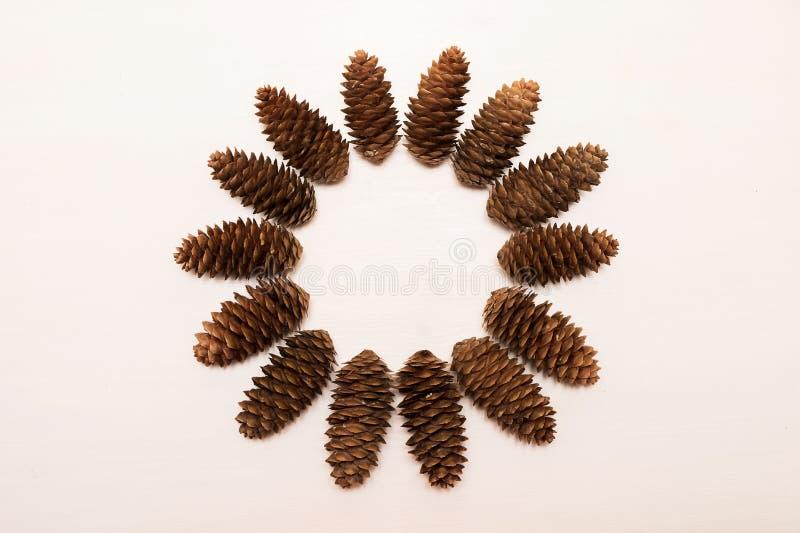 La composición del invierno, marco redondo hizo de conos del pino en el fondo blanco Endecha plana, visión superior Copie el espa imagen de archivo