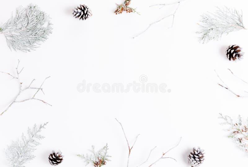 La composición minimalista de la Navidad en los colores brillantes hechos de pino ramifica en el fondo blanco La Navidad, inviern foto de archivo
