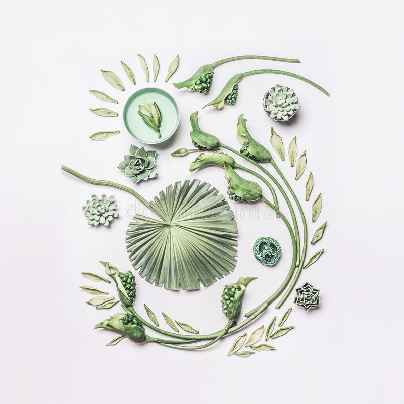 La composición tropical verde de las hojas y de las flores del rizo con agua rueda en el fondo blanco, visión superior, completam fotos de archivo