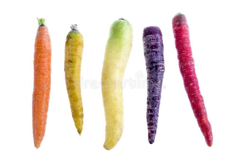 La composition avec des variétés de carotte d'héritage a aligné sur un fond blanc photographie stock
