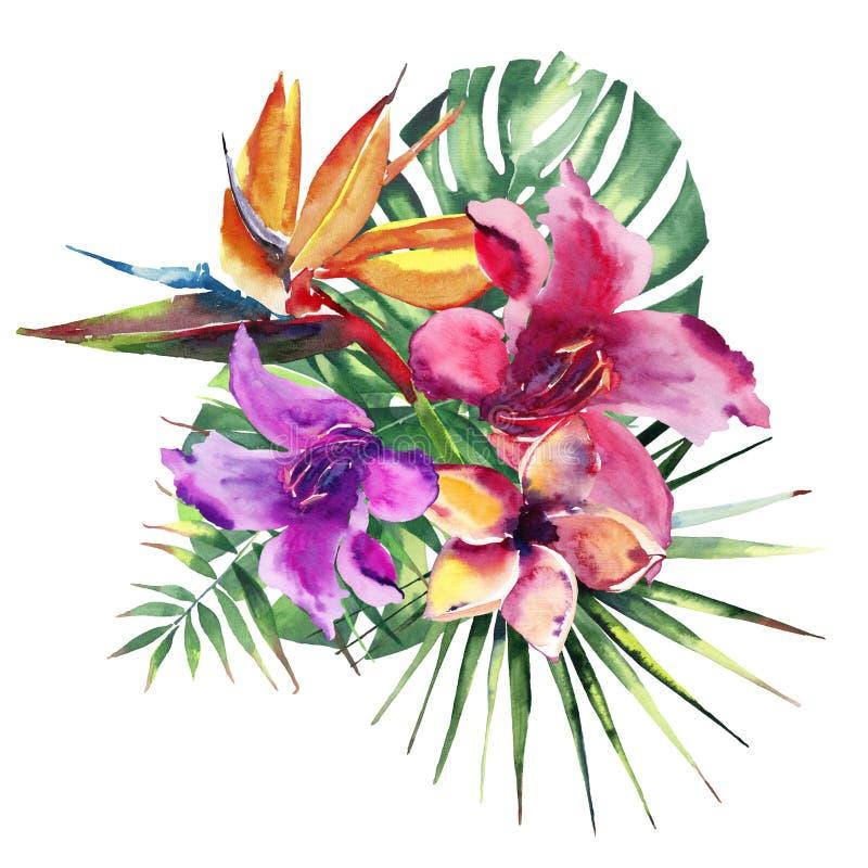 La composition colorée de bel bel été de fines herbes floral tropical merveilleux lumineux d'Hawaï de la violette rose rouge trop illustration libre de droits