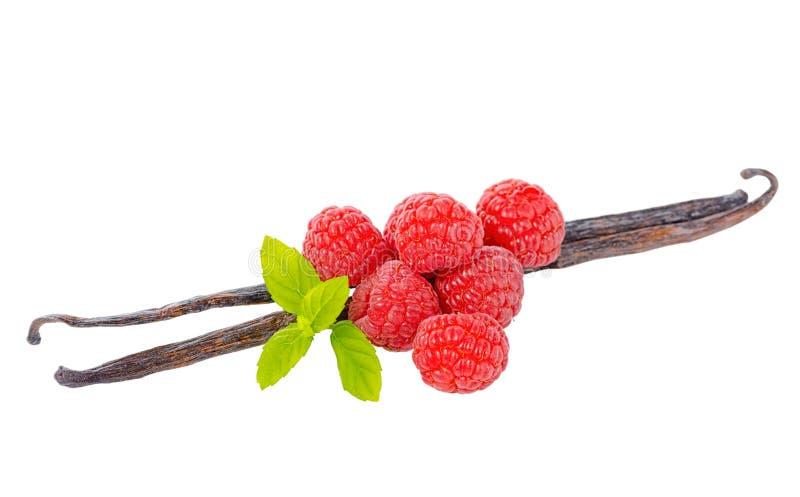 La composizione dei baccelli della vaniglia con le foglie verdi mint e maturo rosso immagini stock libere da diritti