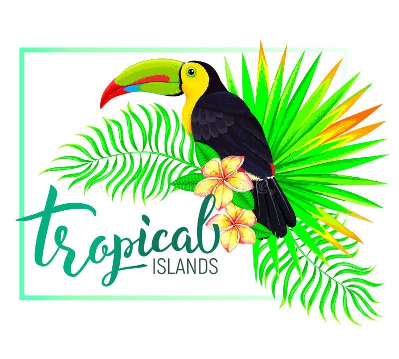 La composizione tropicale nell'isola con il tucano lascia i fiori illustrazione vettoriale