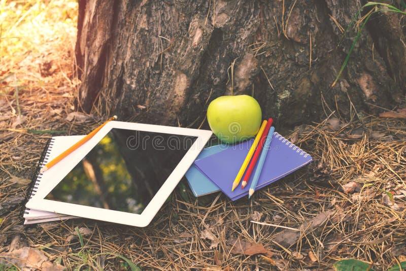 La compressa, taccuini, mela, ha colorato le matite sotto un albero immagine stock