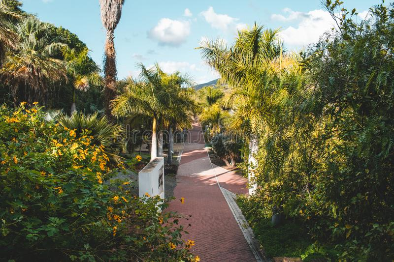 La Concepción Historical-Botanical Gardens just outside Malaga, Spain. Various trees and plants from all over the world stock photography