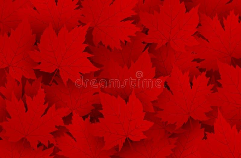 La conception de jour de Canada de l'érable rouge laisse le fond illustration de vecteur